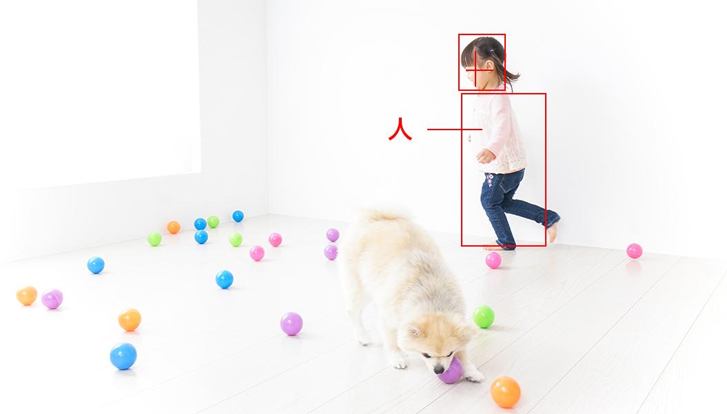 AIが人を見分けて検知